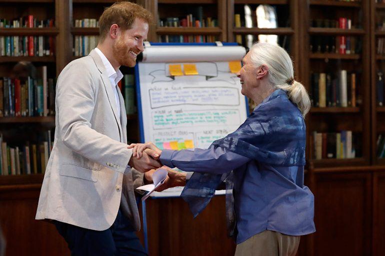 Príncipe Harry y Jane Goodall