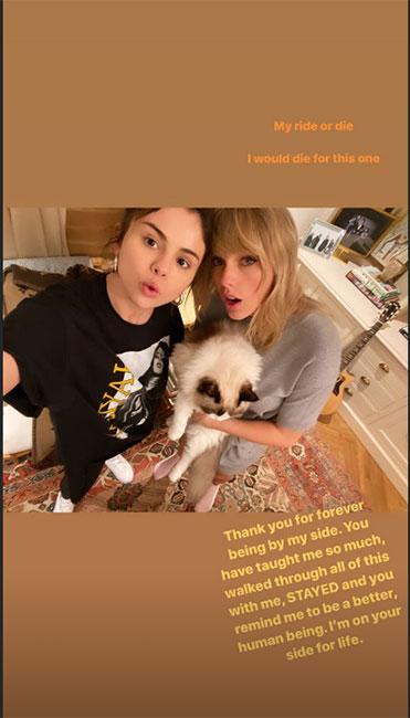 Selena Gomez y Taylor Swift con gato