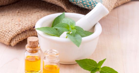 Tendencias verdes: plantas aromáticas para decorar tu hogar