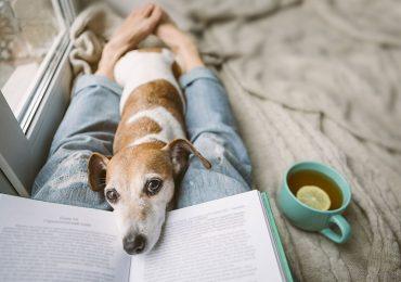 Lecturas para el encierro