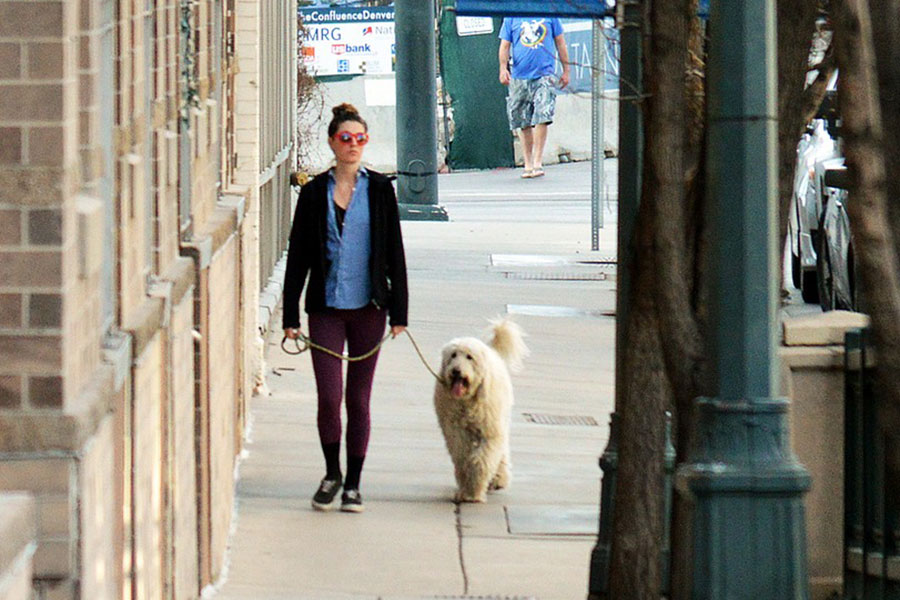 Mujer paseando a su perro