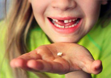 ¿Sabías que guardar los dientes de leche de tus hijos puede salvarle la vida en el futuro?