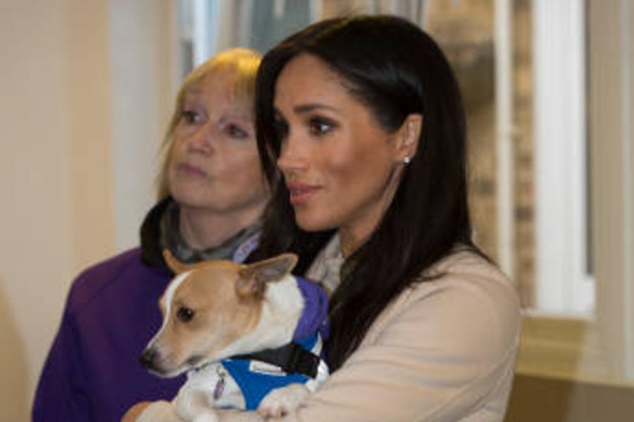 Meghan Markle amadrina un perro en nombre de su hijo Archie