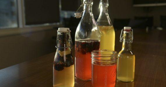 kombucha bebida fermentada