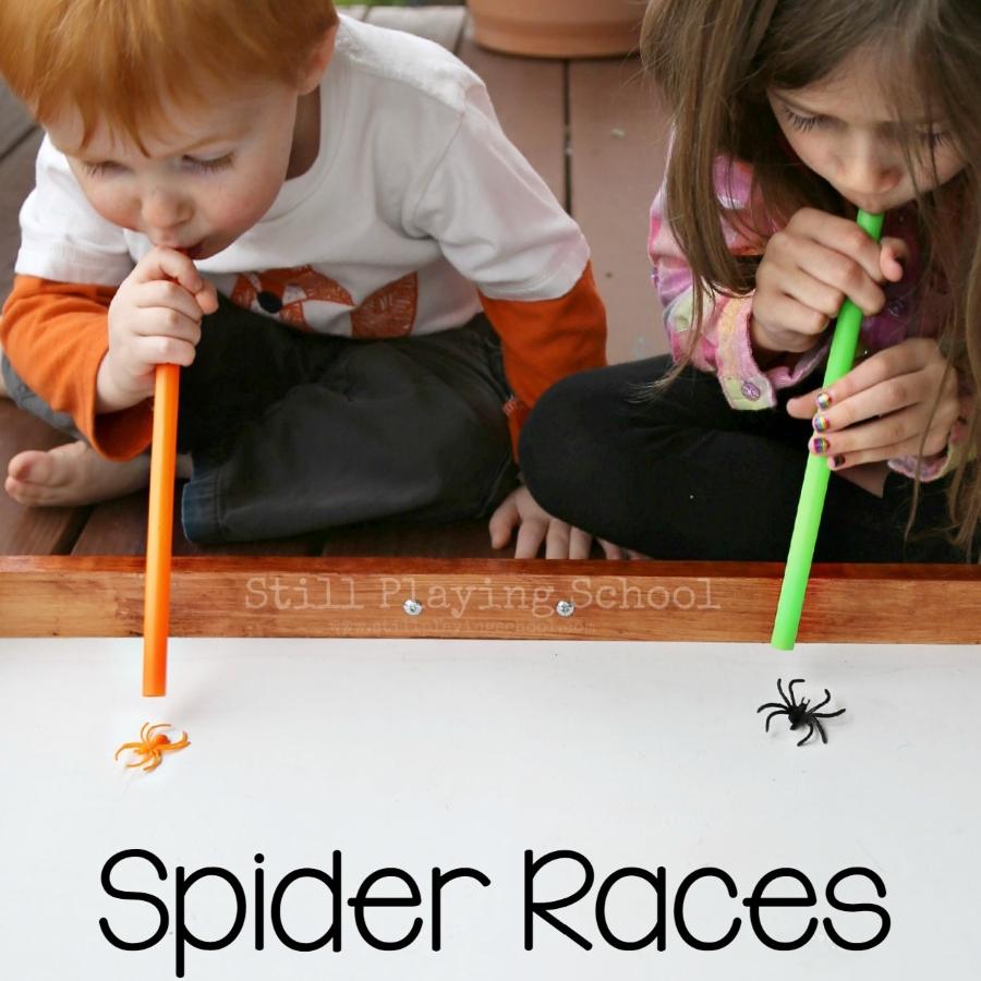 carrera de arañas