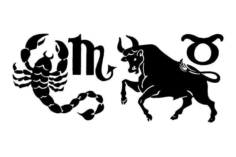 compatibilidad de escorpión (escorpio) con tauro