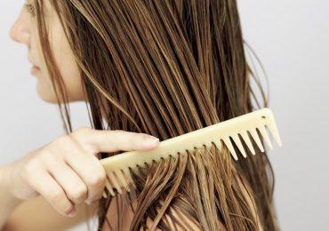 pelo mojado shampoo
