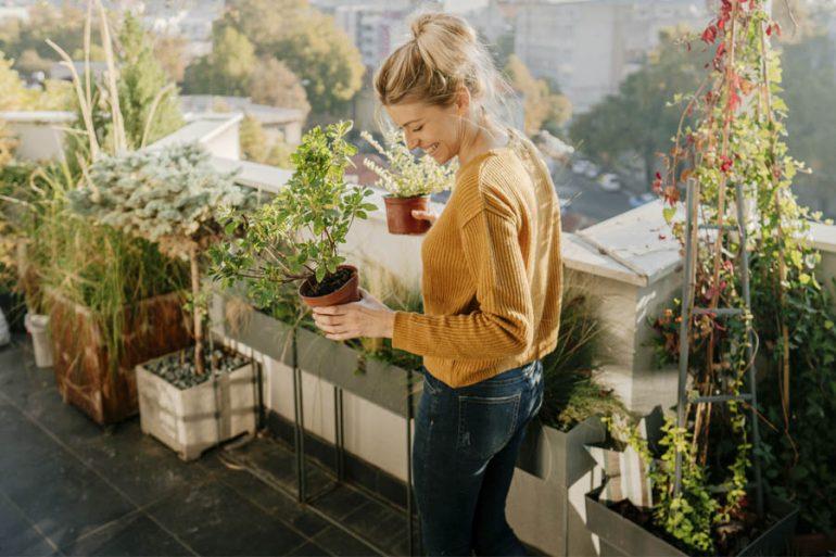 decoración terraza o jardín exteriores