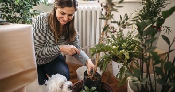 mujer casa y hogar en la naturaleza