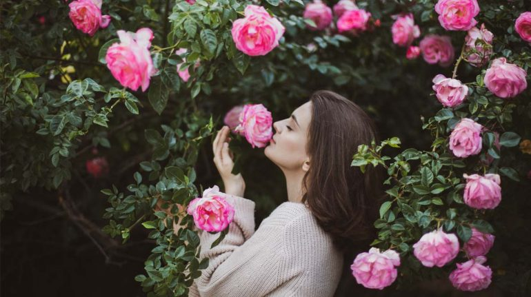 perfume mujer fragarncias